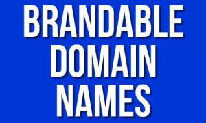 Brandable Domain Names Delas