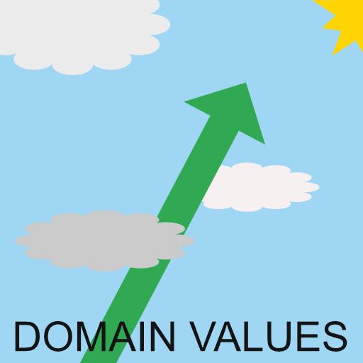 domain name value